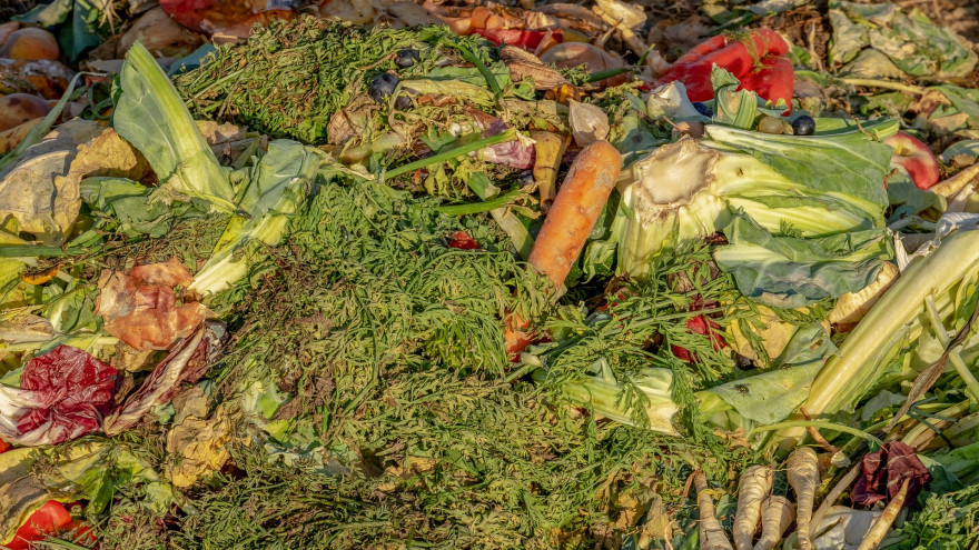 odpady bio warzywa i owoce.jpg